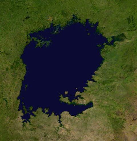 http://terre-a-terre.cowblog.fr/images/LakeVictoriacompositesatellitephoto.jpg