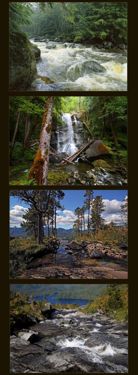http://terre-a-terre.cowblog.fr/images/fPRI1m60618ed.jpg
