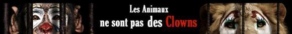 http://terre-a-terre.cowblog.fr/images/lesanimauxnesontpasdesclowns.jpg